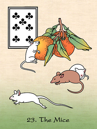 125dpi 23 japan mice