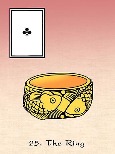 125dpi 25 japan ring