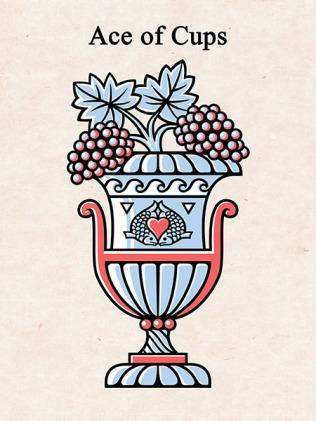 150dpi Opus Cups 1